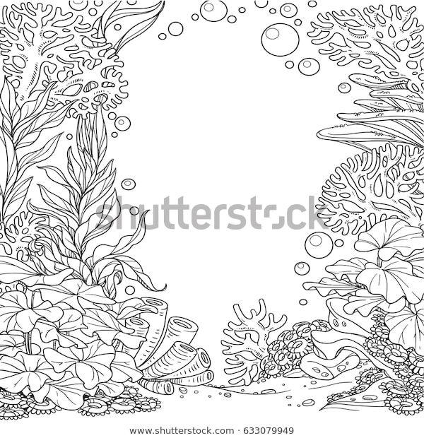 Suchen Sie Nach Unterwasserwelt Mit Korallen Algen Und Anemonen Stockbildern In Hd Und Millionen Weiteren Li Meer Zeichnung Ozean Zeichnung Korallenriff Kunst