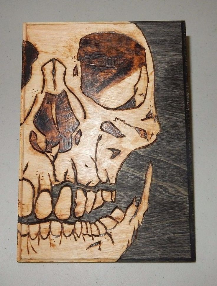 ● PYROGRAPHY HUMAN SKULL WOOD BURNING ART TAXIDERMY OBSCURE BIZARRE WALL DECOR ●