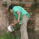 Virus zika: por aumento de casos en Brasil y en el Caribe en Corrientes piden precaución