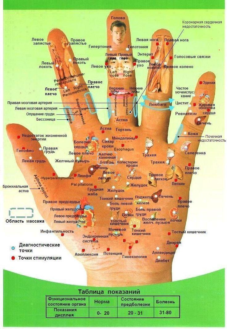 Су-джок семянотерапия - эффективное лечение дома » Женский Мир