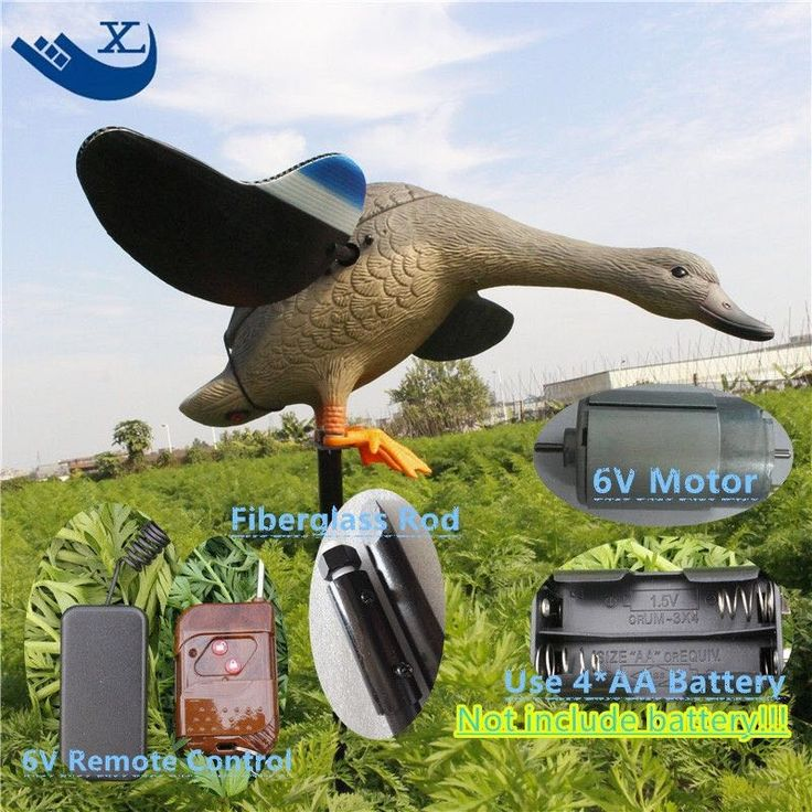 69.66$  Buy now - http://ali5al.worldwells.pw/go.php?t=32787190019 - Turkey Hunting Wholesale 6V Speed Control Eco-Friendly Paint Duck Decoy Duck Decoys For Sale Spinning Wings Decoy From Xilei 69.66$