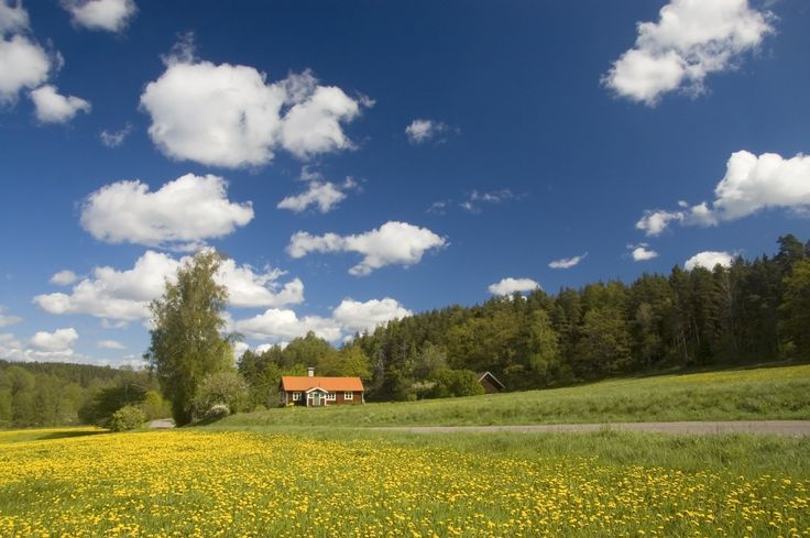 A traditional Swedish red cottage. Photo by Mark Harris