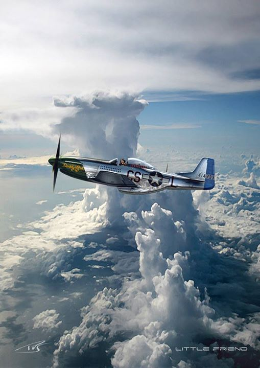 P-51 Artbeautifulwarbirds@gmail.comTwitter: @thomasguettlerBeautiful WarbirdsFull AfterburnerThe Test PilotsP-38 LightningNasa HistoryScience Fiction WorldFantasy Literature & Art