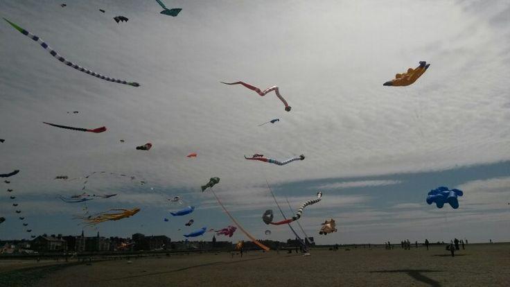 Chase the wind kite festival....had a brilliant day