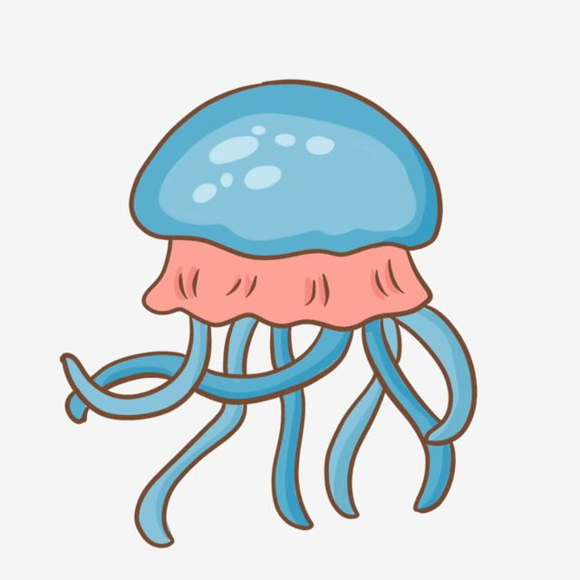 Lindo Animales Marinos Medusas Medusas De Peces Marinos Medusas De Acuario Dibujos Animados De Medusas De Animales Marinos Medusas Dibujadas A Mano Png Y Psd ในป 2021 น าร ก แมงกะพร น แมงกระพร น