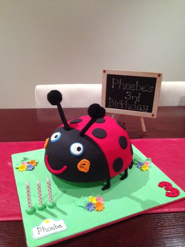 Gaston the Ladybird Cake - I loved making this and loved how much my daughter was spellbound by this cake.
