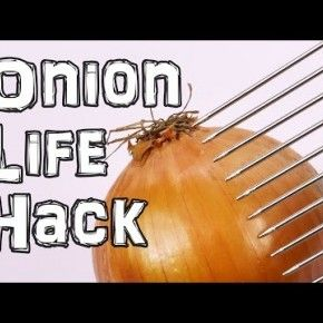 Onion life hack video, using a hair pick.