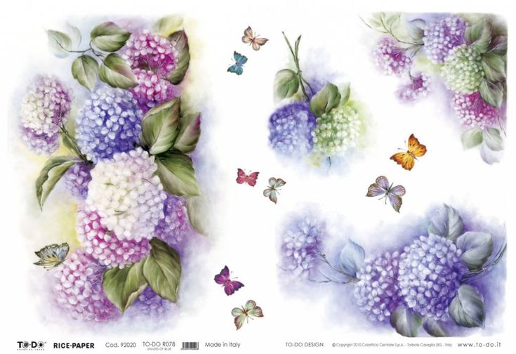 Now just in! Shades of Blue Hydrangea Rice Paper Gorgeous shades on this #ricepaper, #decoupagericepaper, #springflowersricepaper, #hydrangeasricepaper, #hortensia, #decoupagedesignsusa  Love love love this design.  Looks like oil painting!