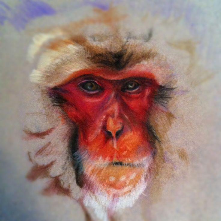 Monkey prismacolor quick study sketch  www.facebook.com/brendamkelly