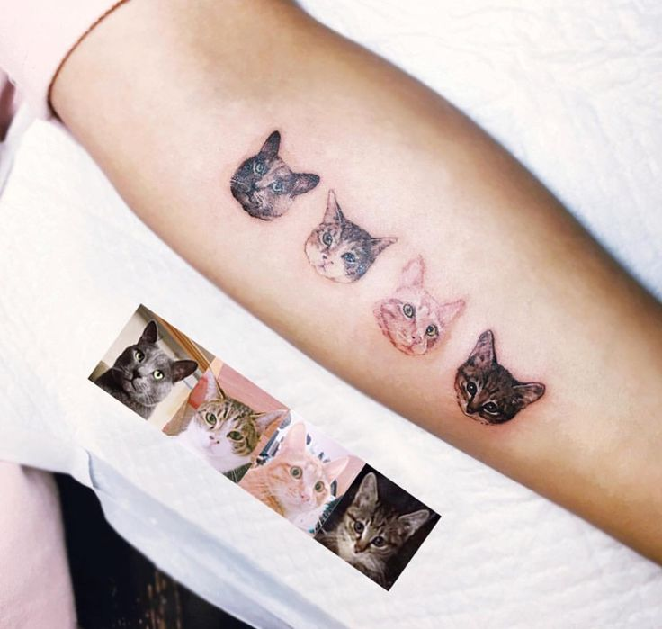 A tattoo for every cat I've ever had.  I love this idea!
