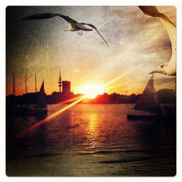 Photo from the Instacanvas gallery for shamani. Barca an der Außenalster. Hier kann man einen schönen Sundowner nehmen...