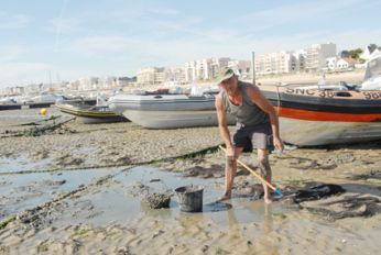 Pêche à Pied: Seafood sammeln - der Nationalsport! | BLEU, BLANC, ROUGE