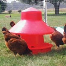 Poultry Equipment Buyer's Guide - FarmTek