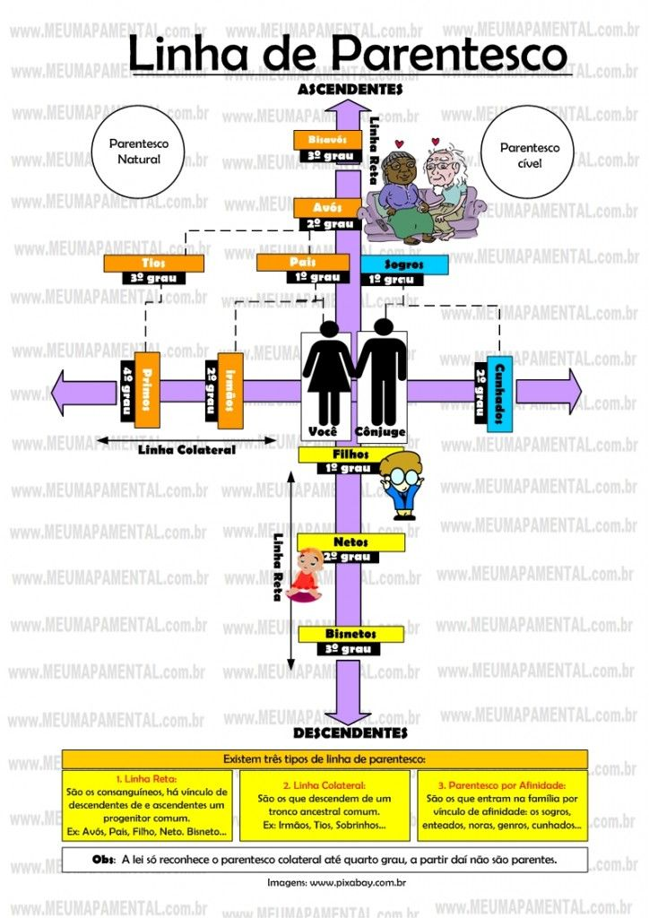 Mapa Mental linha de Parentesco - Direito Civil