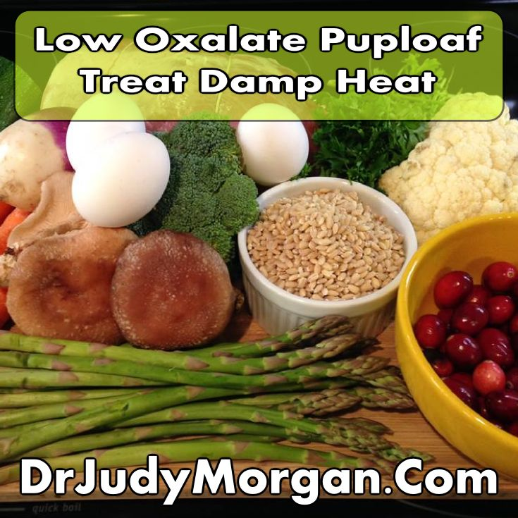 Recipe For Dog Food For Oxalate Stones