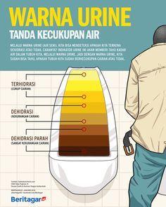 Berbagai warna urine, mulai dari yang transparan, kuning sampai yang kecokelatan menunjukkan tingkat kecukupan cairan dalam tubuh kita.