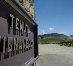 #CabernetDay : Tignanello and Solaia, a pure definition of luxury wine by Antinori Sbronzi tour 2013