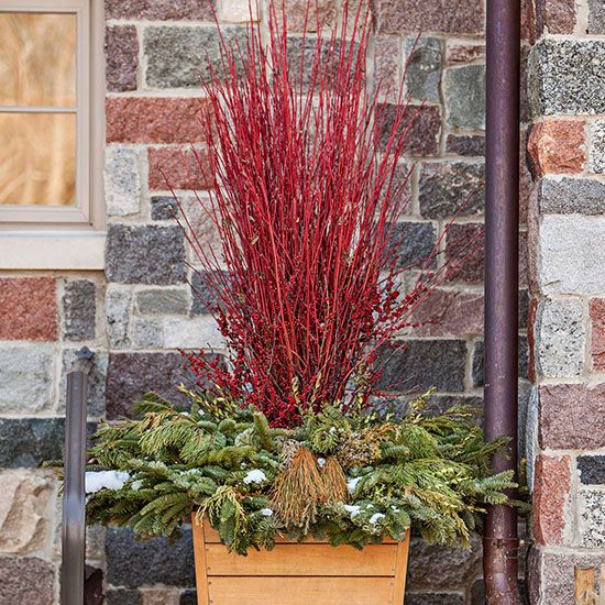 24 best ideas about gardening in the winter on pinterest planters fraser fir and magnolias - Fall decor trends five tips to spruce up your homes ...