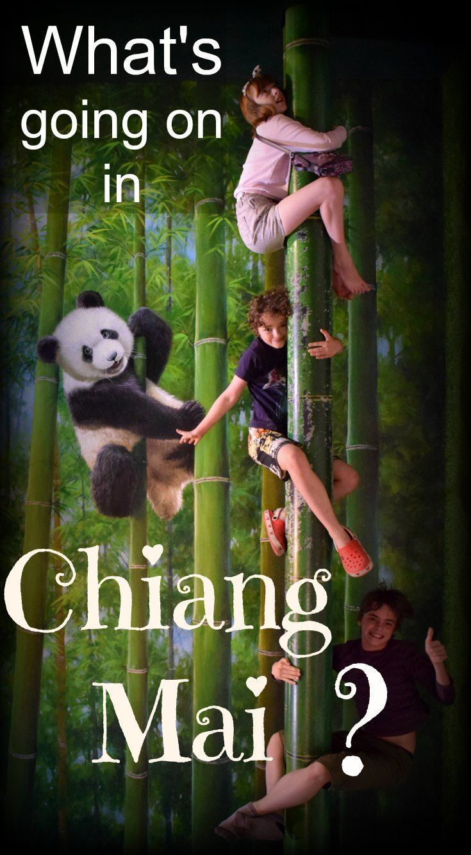 Family Travel in Thailand. 3D Art Museum Chiang Mai Review via /worldtravelfam//