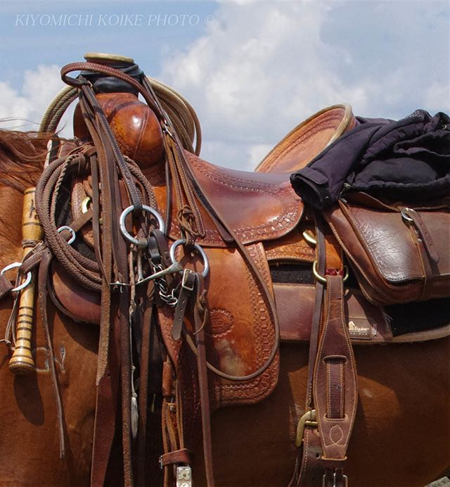 Instagram media by kiyomichikoike - #northamerica #usa #horse #cowboy #western #wyoming #colorado #rockymountain #butchcassidy #photography #leather #travel #北米 #アメリカ #カウボーイ #乗馬 #馬 #ウエスタン #ワイオミング #コロラド #ロッキーマウンテン #ブッチキャシディー #写真 #レザー #旅行