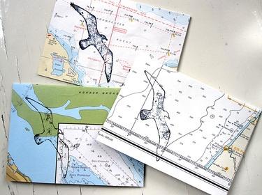 Zeemeeuw op vintage zeekaart