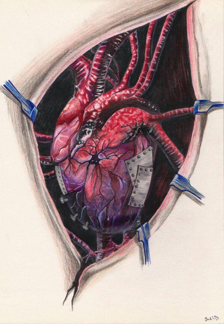 Heart, szív