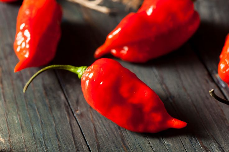 The Ghost Pepper Planting Guide: A To Zing