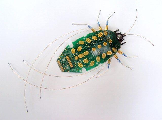 insectos piezas electronicas Julie Alice Chappell 5