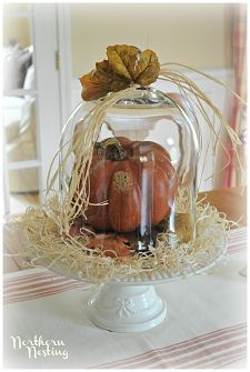 Thanksgiving/ Fall Tablescapes