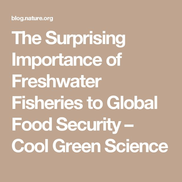The Surprising Importance of Freshwater Fisheries to Global Food Security – Cool Green Science