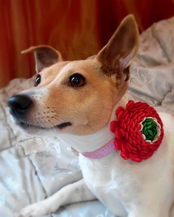 Dog collar flowerDog collarRed Green dog collar by AirinFlowers #DogAcccessory #PetAccessory #DogClothes #kanzashi #PetSupplies #CollarFlower