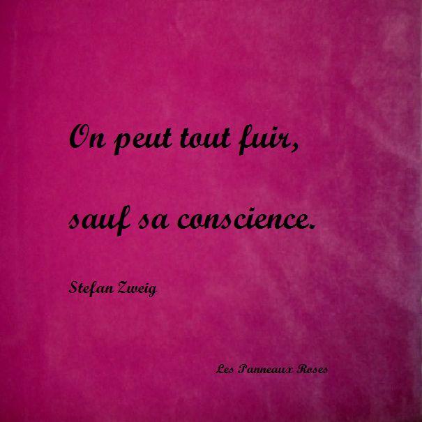 Stefan Zweig - On peut tout fuir sauf sa conscience....