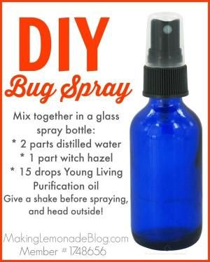 Homemade DIY bug spray using essential oils (and which oils to use to repel various bugs such as mosquitoes, flies, ticks, lice and more!) Only 3 ingredients, and it WORKS! makinglemonadeblog.com #essentialoils by jayne
