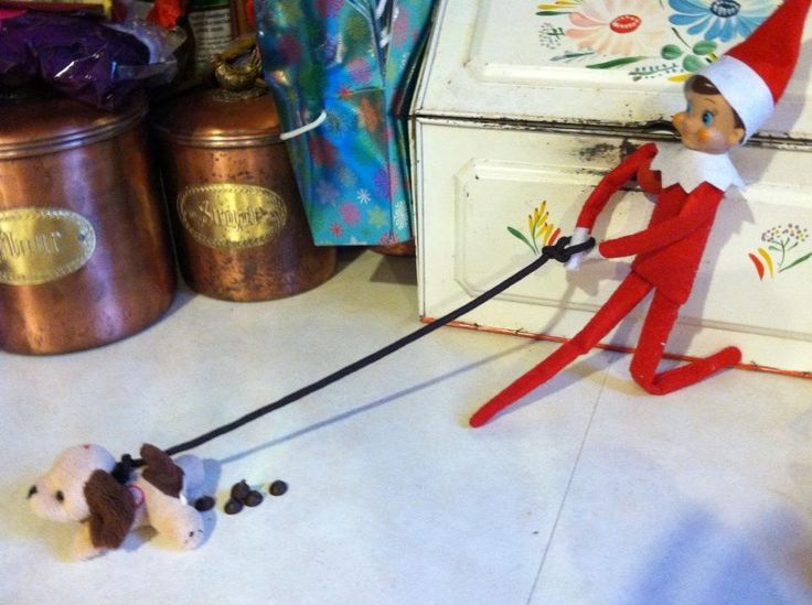 32 Best Images About Elf On Shelf Fun On Pinterest Dog