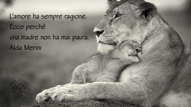 L'amore ha sempre ragione, ecco perché una madre non ha mai paura. Alda Merini…