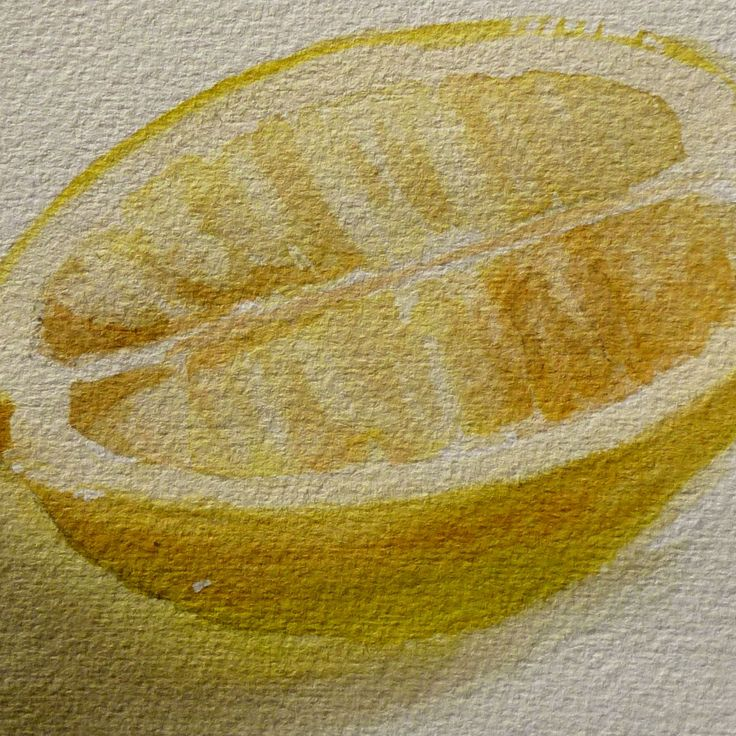by building up textures with washes it creates a more realistic and detailed view of the inside of a lemon