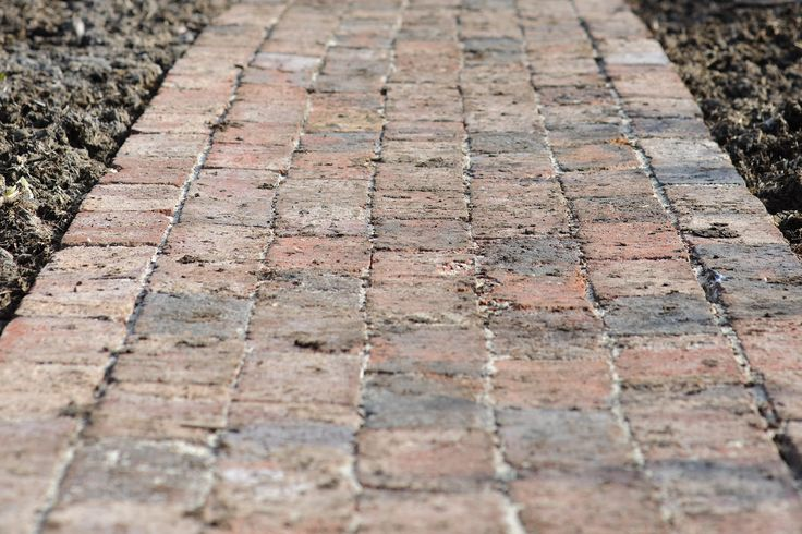 Monty Don reveals his easy process to building a beautiful brick garden path, with tips on the materials to use, in this video guide on gardenersworld.com.