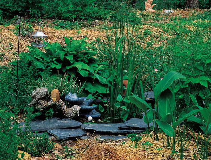 437 best images about small garden ponds on pinterest for Garden pond insert