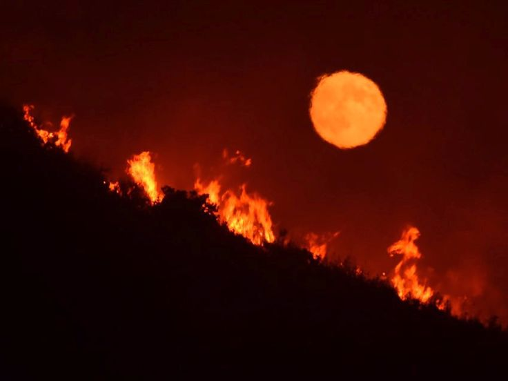 The wildfires in California are so bad this photo made it look like the moon was engulfed in flames - The wildfires in California are so bad that when the nearly full moon rose on Friday night, it looked like it was engulfed in flames:  Mike Eliason, public information specialist for the Santa Barbara County Fire Department , took the photo of the Alamo fire on a hilltop off Highway 166 east of Santa Maria, California.  The Alamo fire now spans over 23,000 acres with only 10% of it…