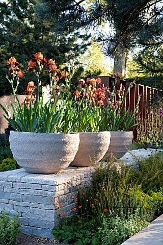 For the more formal look, 3 containers planted with the same plants.  Very pretty!