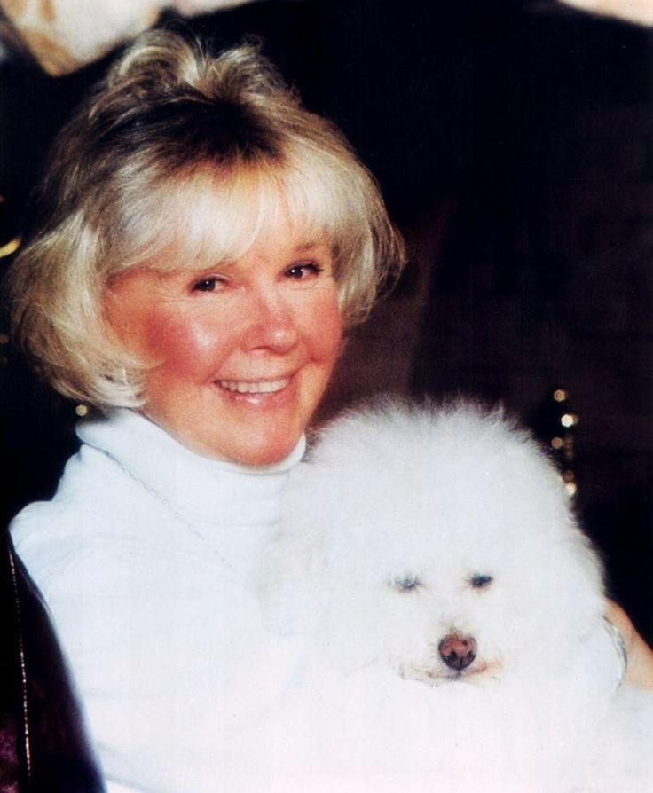 Doris Day, with her dog Duffy. the dog she rescued from a shelter because the owners thought the dog was too old and wanted a puppy. This adoption, in turn, inspired Doris to start the Duffy Day Senior Rescue program, a division of Doris Day Animal Foundation. Duffy died last year, but she had a few great years with Doris and the other animals, and rescued from premature death at the shelter. What sweet faces, both of them!
