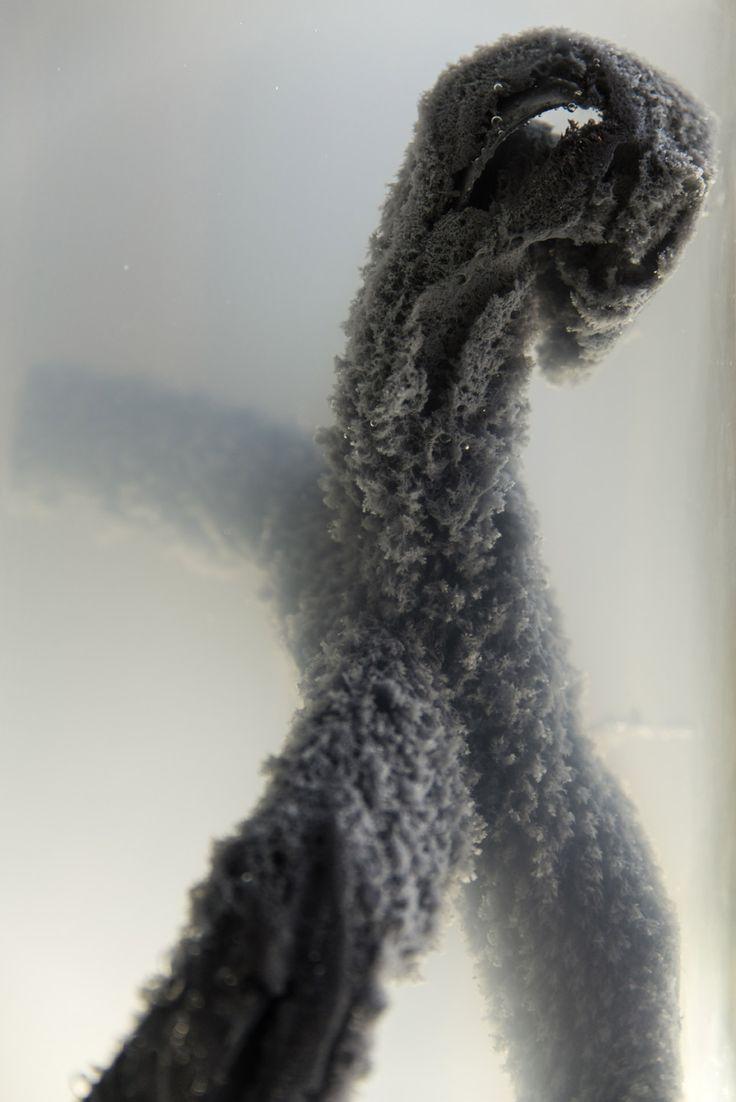 Tony Fiorentino  Melancholy Rocking Horse, 2013 (particolare) vetro, zinco, acetato di piombo, acqua, cavalli a dondolo misure ambientali Veduta dell'installazione di contemporary locus V, Bergamo  Courtesy contemporary locus, Bergamo e Galleria Doppelgaenger, Bari Foto Simone Montanari