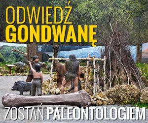 Na końcu ścieżki dydaktycznej w Juraparku czeka na Was Gondwana - obóz paleontologiczny.  W Gondwanie można wykopać szkielet dinozaura, ułożyć puzzle, przyjrzeć się pracy prawdziwego paleontologa i rozwiązać zagadki naukowe.
