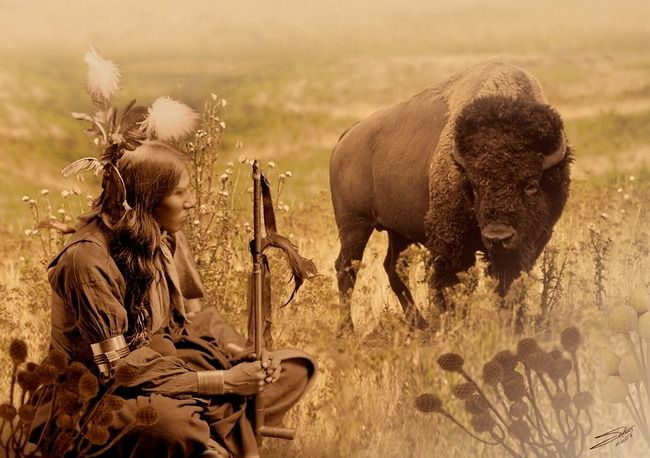 image of native american arts & graphics | Native American Sioux and Bison by I.M. Spadecaller, Tampa Bay