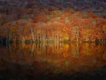 Autumn in Aomori, Japan