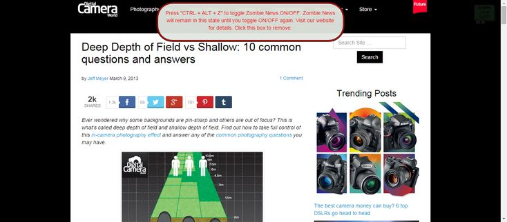 Deep Depth of Field vs Shallow: 10 common questions and answers | Digital Camera World