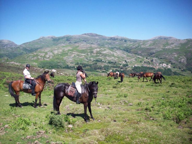 There are few experiences that can give us the sense of total freedom as horseback riding in the forest. Enjoy this unique experience with Tourboks.