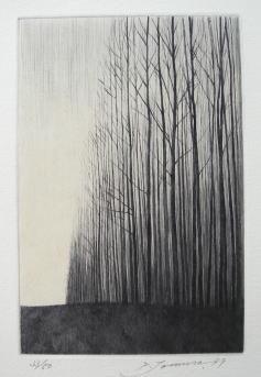 Shigeki Tomura  /自然、冬Ⅱ/戸村茂樹