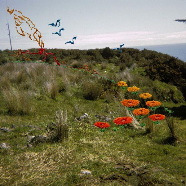 Back Stitch (Flying Geese) : Caroline McQuarrie