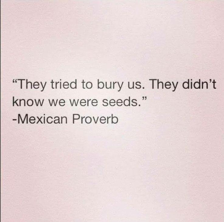 """""""Trataron de enterarnos. No sabian que nosotros eramos semillas."""""""